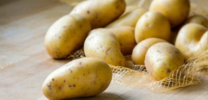 Receitas de batata em conserva