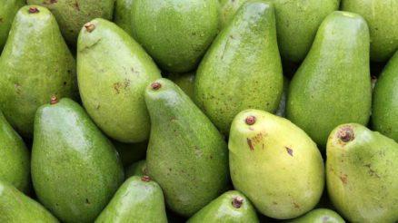 Receitas de doce de mamão verde